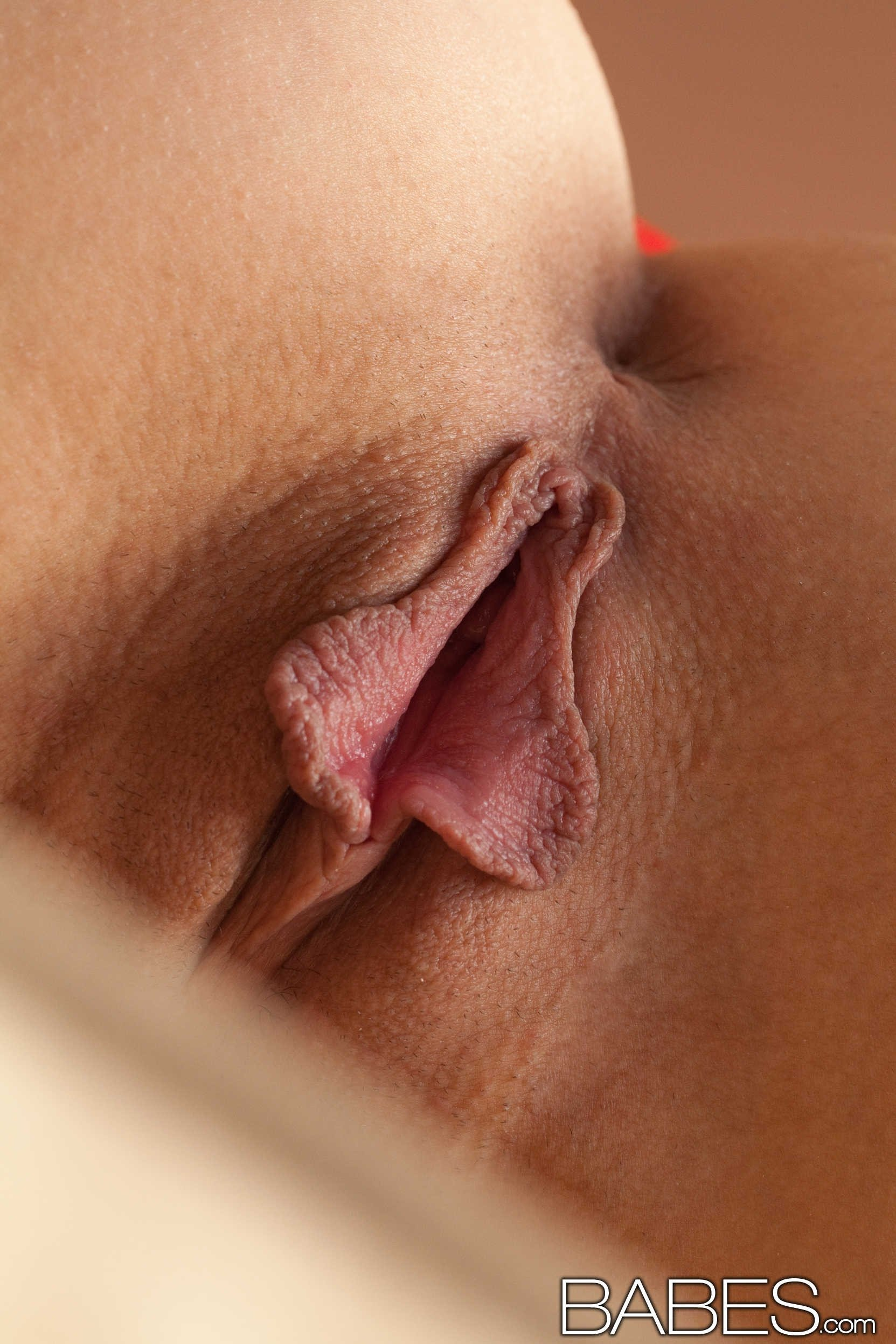 Free close-up pussy gallery